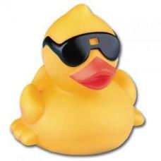 Duck Sunny